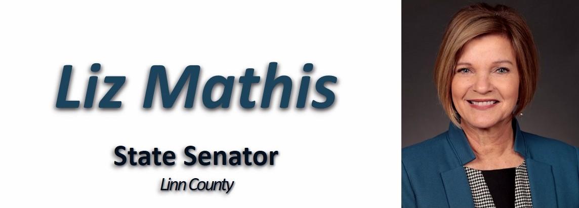 State Sen. Liz Mathis
